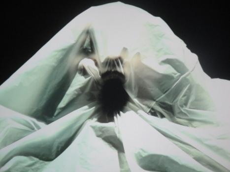 closeupbreath