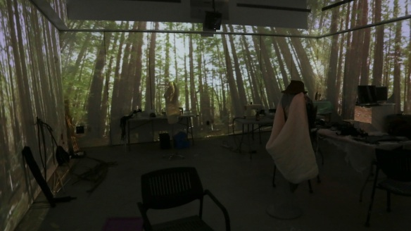 woods_projection